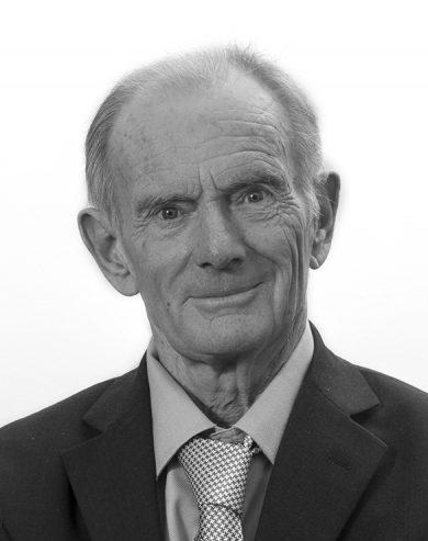 Dr David Lewis-Hodgson
